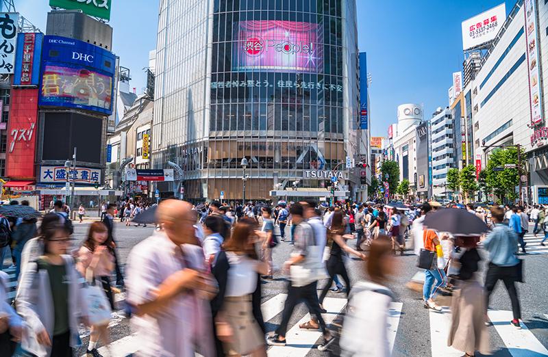 Shibuya & Harajuku