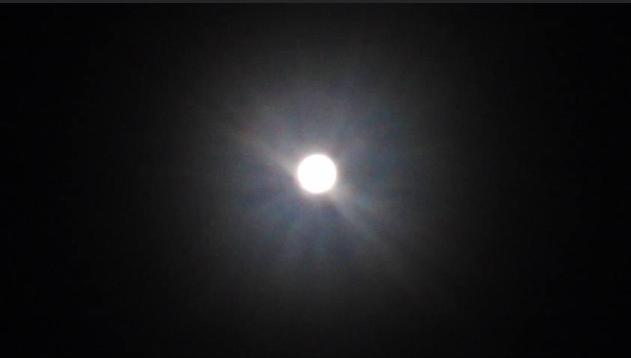 Tsukimi (Full Moon-Viewing)